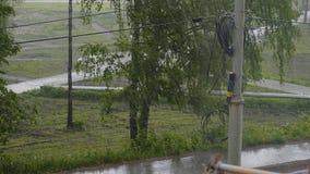 Est? lloviendo dif?cilmente afuera Opini?n de la calle del balc?n Los ?rboles doblan bajo r?fagas del viento En la agua corriente almacen de video