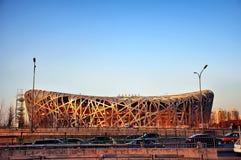 Estádio do ninho do pássaro. Imagens de Stock