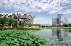 Estádio olímpico nacional de China Foto de Stock