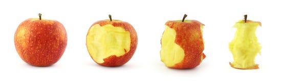 Estágios de comer a maçã fotos de stock royalty free