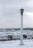 Estándar ligero congelado foto de archivo libre de regalías