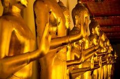 Estátua amarela dourada da Buda que está que medita e que reza imagem de stock royalty free