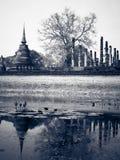 Estátua antiga de Buddha Parque histórico de Sukhothai, Sukhothai Prov Fotos de Stock Royalty Free
