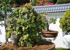 Estátua asiática do jardim Foto de Stock Royalty Free