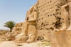 Estátua assentada na frente do sétimo pilão do templo de Karnak, Luxor, Egito fotografia de stock royalty free