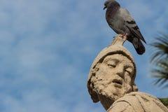 A estátua barroco com pombo Foto de Stock Royalty Free