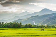 Estátua branca grande de buddha na montanha Fotografia de Stock Royalty Free