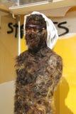 Estátua coberta no cabelo imagens de stock royalty free