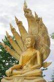 A estátua da Buda com nove dirigiu a serpente imagens de stock