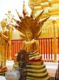 Estátua da Buda da cor do ouro no templo budista Foto de Stock