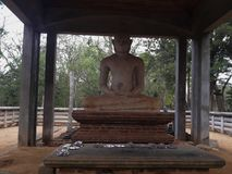 Estátua da Buda de Samadhi Fotografia de Stock