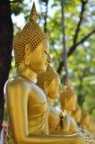 Estátua da Buda do ouro Foto de Stock Royalty Free