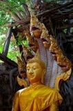 Estátua da Buda em Tailândia Ang Thong Imagens de Stock Royalty Free