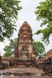 Estátua da Buda em Wat Maha That, Ayutthaya, Tailândia Imagens de Stock Royalty Free