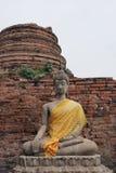 Estátua da Buda em Wat Yai Chai Mongkon Imagens de Stock