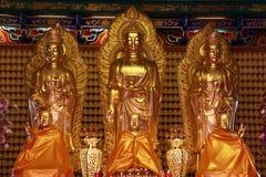 Estátua da Buda, estuque no templo chinês Imagem de Stock Royalty Free