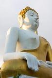 Estátua da Buda grande imagem de stock royalty free