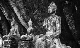 Estátua da Buda no meio do templo na montanha A imagem foi disparada em preto e branco Fotos de Stock Royalty Free