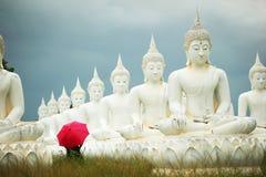 Estátua da Buda no prado Fotografia de Stock