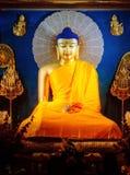 Estátua da Buda no templo de Mahabodhi Fotos de Stock Royalty Free