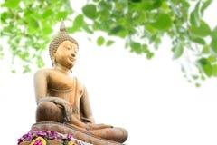 Estátua da Buda sob a árvore de Bodhi Imagem de Stock Royalty Free