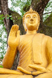 Estátua da Buda sob a árvore do po no templo tailandês Imagens de Stock Royalty Free