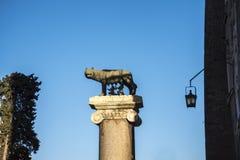 Estátua da ela lobo que mama Romulus e Remus no monte de Capitoline em Roma Itália Imagem de Stock Royalty Free