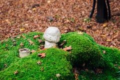 Estátua da pedra do templo de Sanzenin em Ohara, Kyoto, Japão imagem de stock