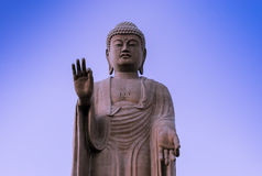 Estátua de assento gigante da Buda imagem de stock royalty free