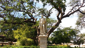 Estátua de Bolivar Fotografia de Stock