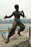 Estátua de Bruce Lee Fotos de Stock Royalty Free
