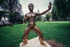 Estátua de Bruce Lee fotografia de stock