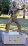 Estátua de Bruce Lee no parque fotografia de stock