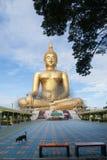 Estátua de buddha do ouro sob a construção no templo tailandês com céu claro WAT MUANG, Ang Thong, TAILÂNDIA Fotos de Stock Royalty Free