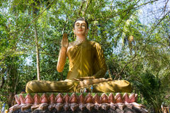Estátua de Buddha na floresta imagem de stock royalty free
