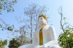Estátua de Buddha no templo tailandês Fotos de Stock Royalty Free