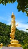 Estátua de Budha fotos de stock