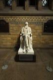 Estátua de Charles Darwin no museu de ciência fotos de stock royalty free