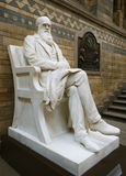 Estátua de Darwin Fotografia de Stock