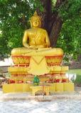 estátua de encontro Ouro-colorida da Buda no templo budista Fotos de Stock