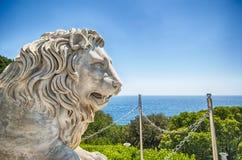 Estátua de mármore do leão do palácio de Vorontsov na Federação Russa de Crimeia fotografia de stock