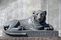 A estátua de mármore preta do leão encontrou em museus do Vaticano Imagem de Stock
