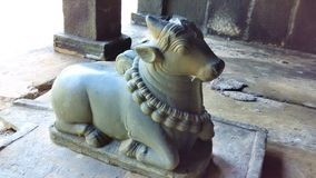 Estátua de Nandi Imagens de Stock