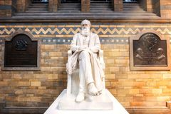 Estátua de Sir Charles Darwin no museu da história natural em Londres, Reino Unido imagem de stock royalty free