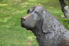 Estátua de um cão em Londres Imagens de Stock Royalty Free
