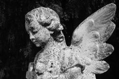 Estátua do anjo da criança Imagens de Stock