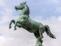 Estátua do cavalo em Hannover Fotos de Stock Royalty Free