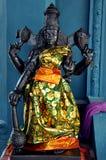 Estátua do deus da cultura do Tamil imagem de stock