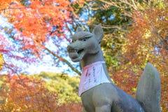 Estátua do Fox no santuário de Fushimi Inari na estação do outono em Kyoto imagem de stock royalty free