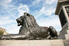Estátua do leão no quadrado de Trafalgar Foto de Stock